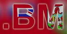 Inregistrare si reinnoire domenii .bm