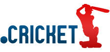 Inregistrare si reinnoire domenii .cricket